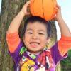 【保育士さんへアンケート】園における子どもの写真について
